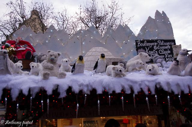 Marché de Noël Colmar 2014 Imgp7610