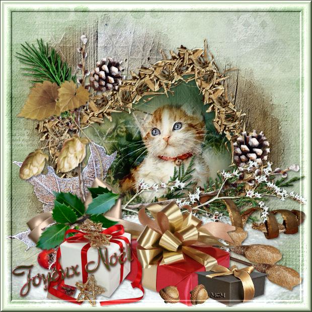 Le père Noël ammène sa hotte remplie de cadeaux pour tous les enfants sages! U7_f1j10