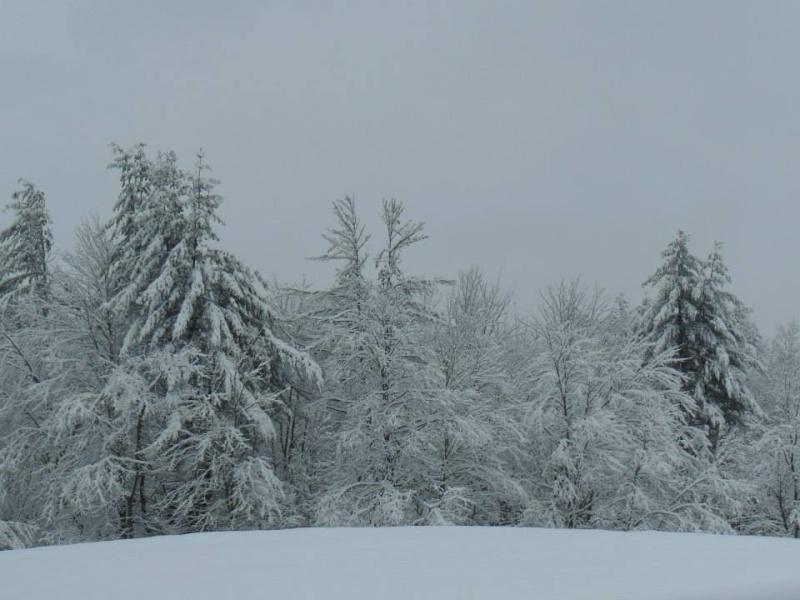 Снег во Македонија - Page 4 Dcim1011