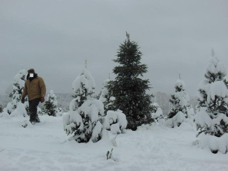 Снег во Македонија - Page 4 Dcim1112