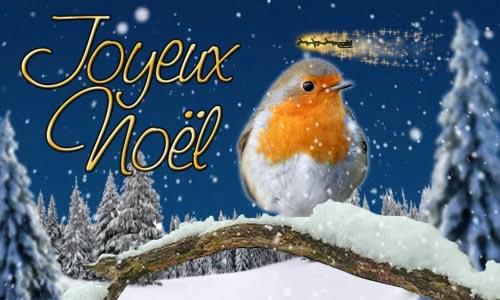Le père Noël ammène sa hotte remplie de cadeaux pour tous les enfants sages! Cc_el_10