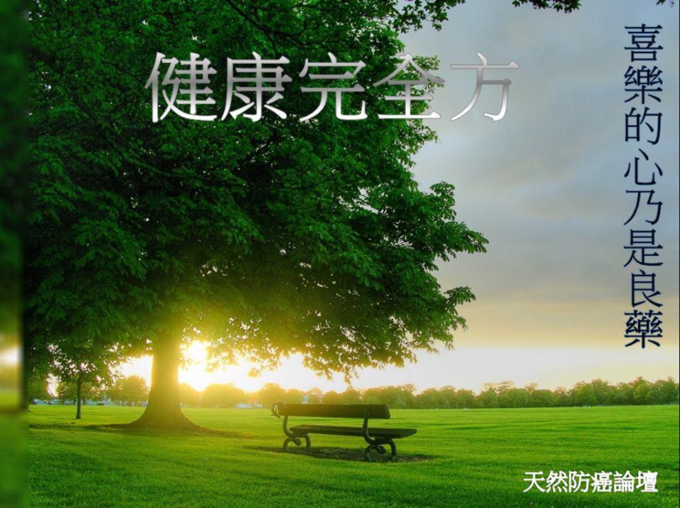 朋友 - 張佩珊 10872512