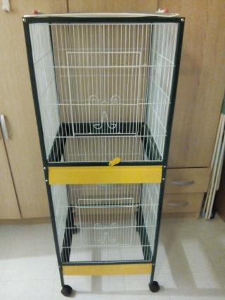 Nouvelles rates, nouvelle cage !  Img_2010