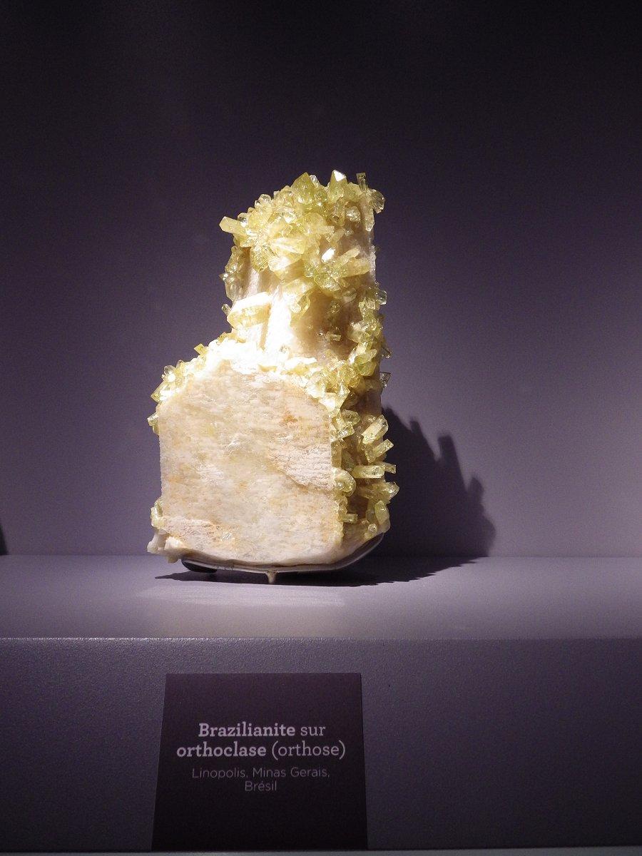 Photos exposition « Trésor de la Terre ». Sphot108