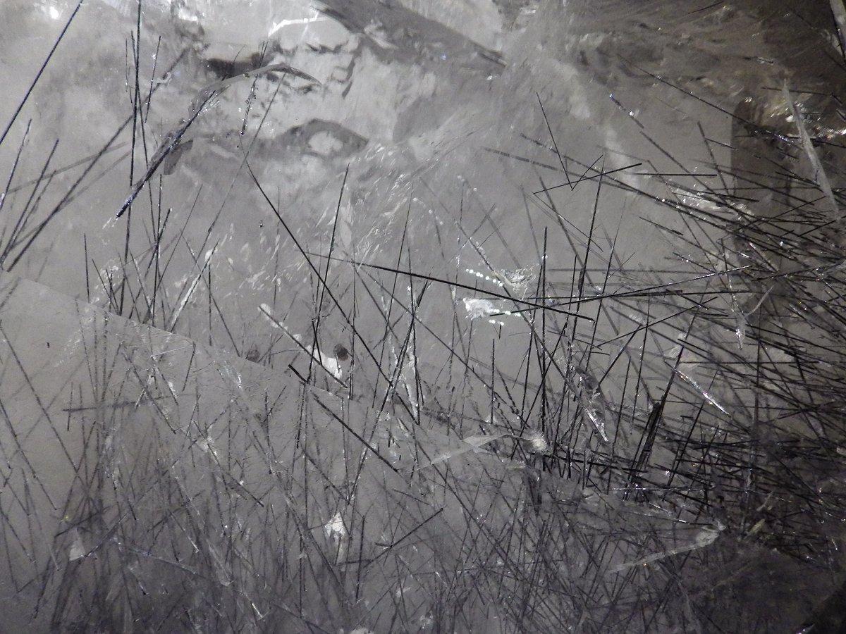 Photos exposition « Trésor de la Terre ». Sphoto17