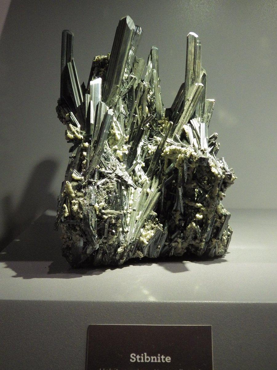 Photos exposition « Trésor de la Terre ». Sphoto46