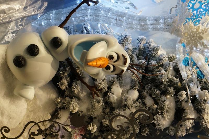 Réveillon de Noël 2014 à Disney _dsc2211