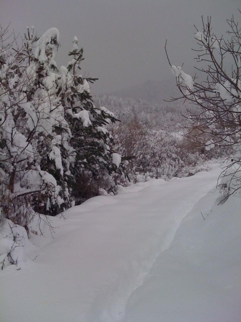 Снег во Македонија - Page 3 Img_0016