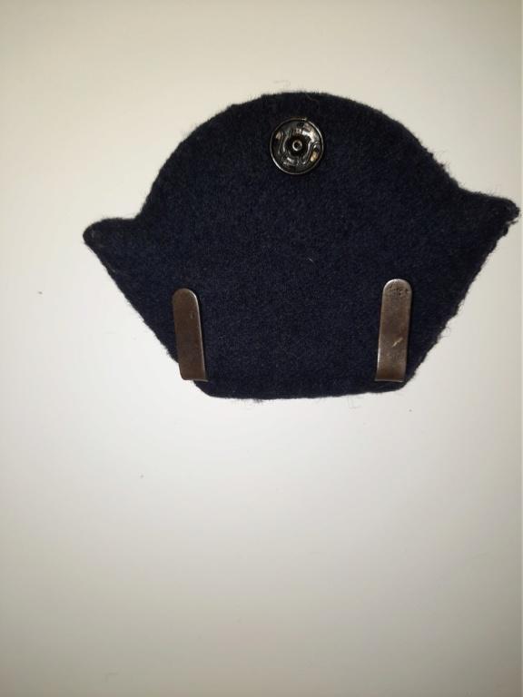 Insigne de casquette à identifier  20200687