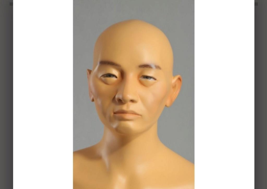 Mannequin de présentation 20201266