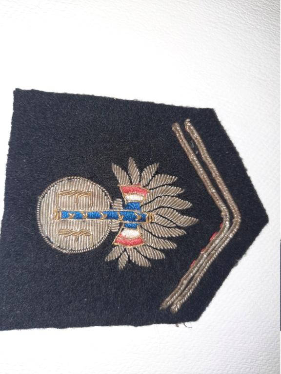 Patte de col Garde Maréchal Pétain 221