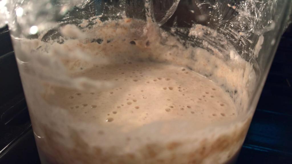 Pasta Madre: trucchi e segreti 26-03_10