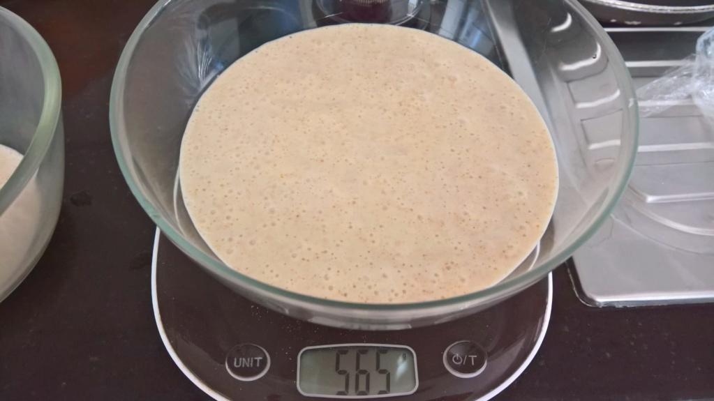 Pasta Madre: trucchi e segreti 28-03_14