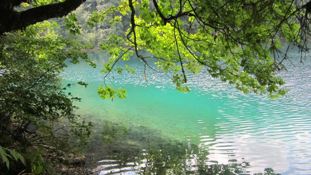 Lago di Tovel Img_0413