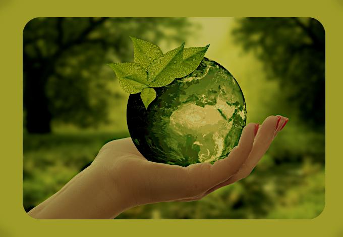 Экологический Эмпат. Aau_1610