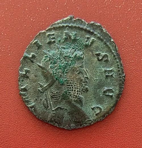 Antoninien de Gallien , quel atelier ? RIC ? Imag2215