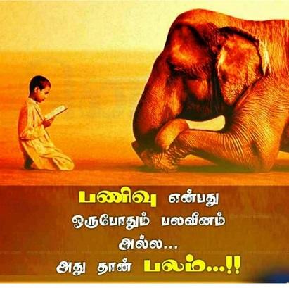 ...ரசிக்க தெரிந்தவனே வாழ்க்கையை வாழ தெரிந்தவன்!! 0f699710