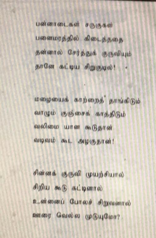 சிறிய விதை பெரிய மரம் - சிறுவர் பாடல் 1356da10