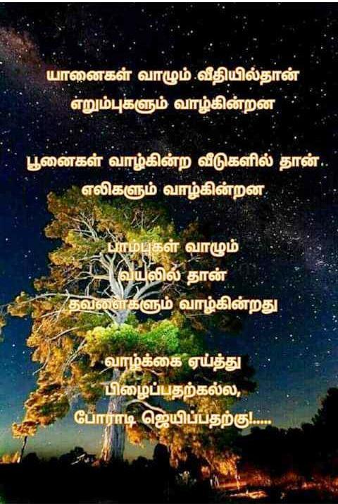 படித்ததை பகிர்வோம் - பல்சுவை 74d50310