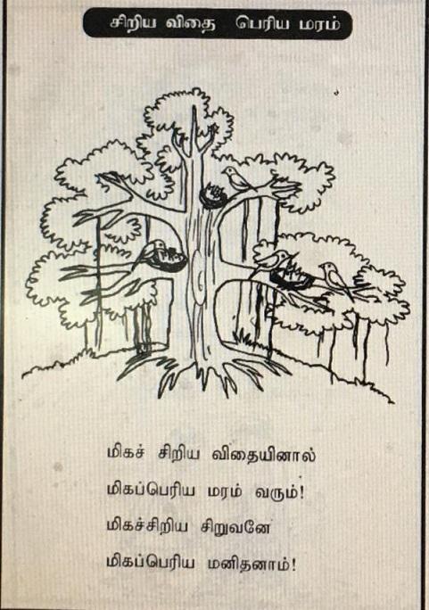 சிறிய விதை பெரிய மரம் - சிறுவர் பாடல் 9d360510