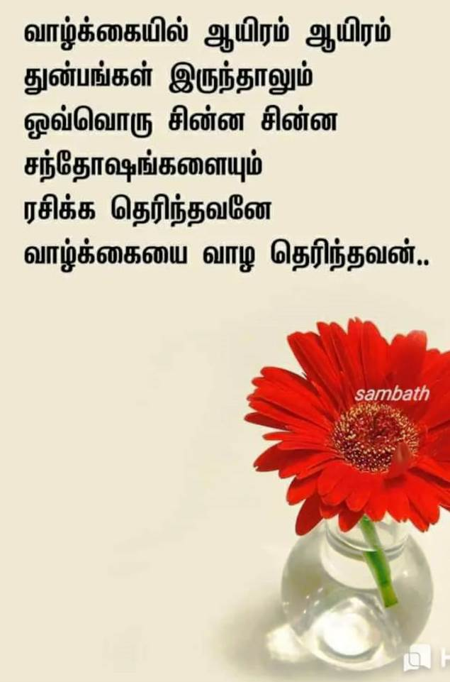 ...ரசிக்க தெரிந்தவனே வாழ்க்கையை வாழ தெரிந்தவன்!! A4220710