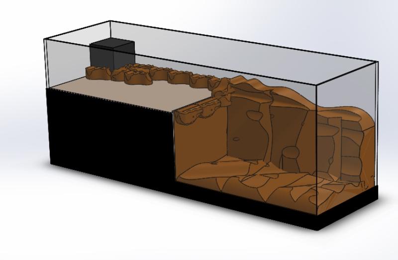 Avant projet Bac mixte DSB - Pierres vivantes et mini fosse artificielle - MNZ66 Assemb10