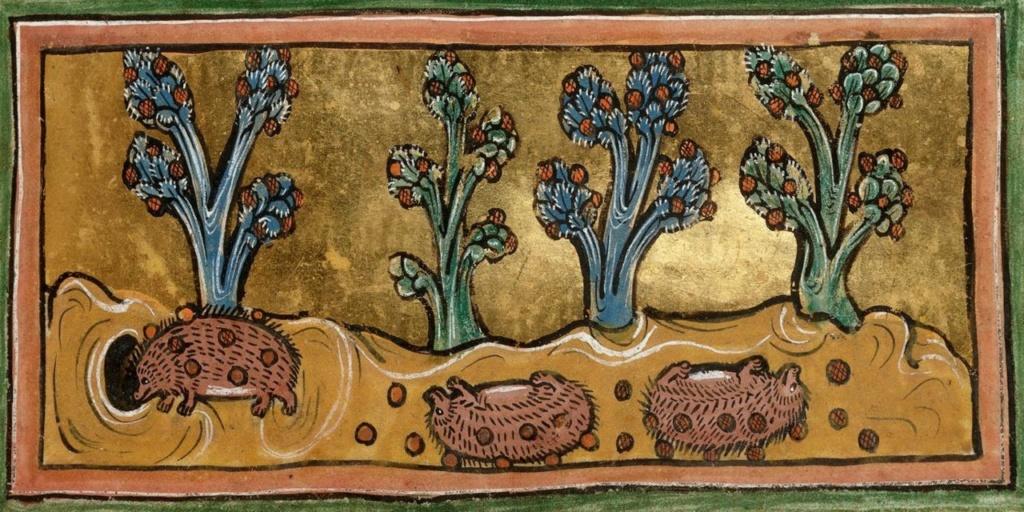 Titula la novela a partir de la imagen - Página 3 Hedgeh10