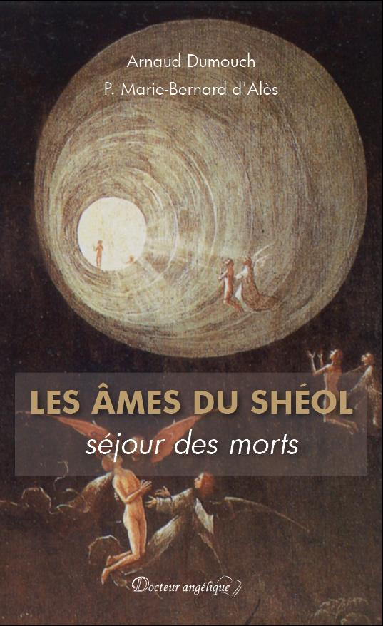 Livre : Les âmes du Shéol, séjour des morts Couv2_10