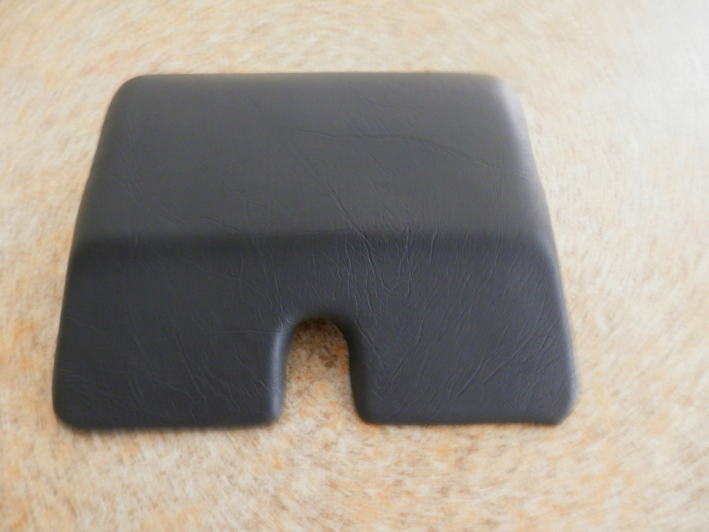 22 Lt OEM top box back rest recover. P3120012