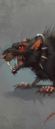 Bestiaire Rat10
