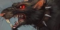 Bestiaire Rat11