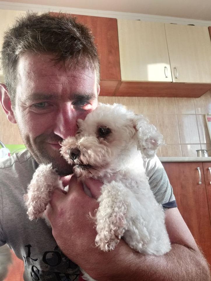 FRIZZY - Adorable femelle Bichon de petite taille - née environ en juillet 2011 - En FA chez Florin - (Roumanie) - adoptée par Maria (Suisse) 66210510