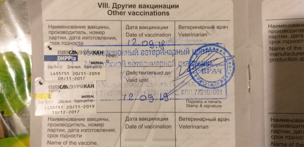 Москва, Бакс, кобель, 02.06.2010 - Страница 7 20180910