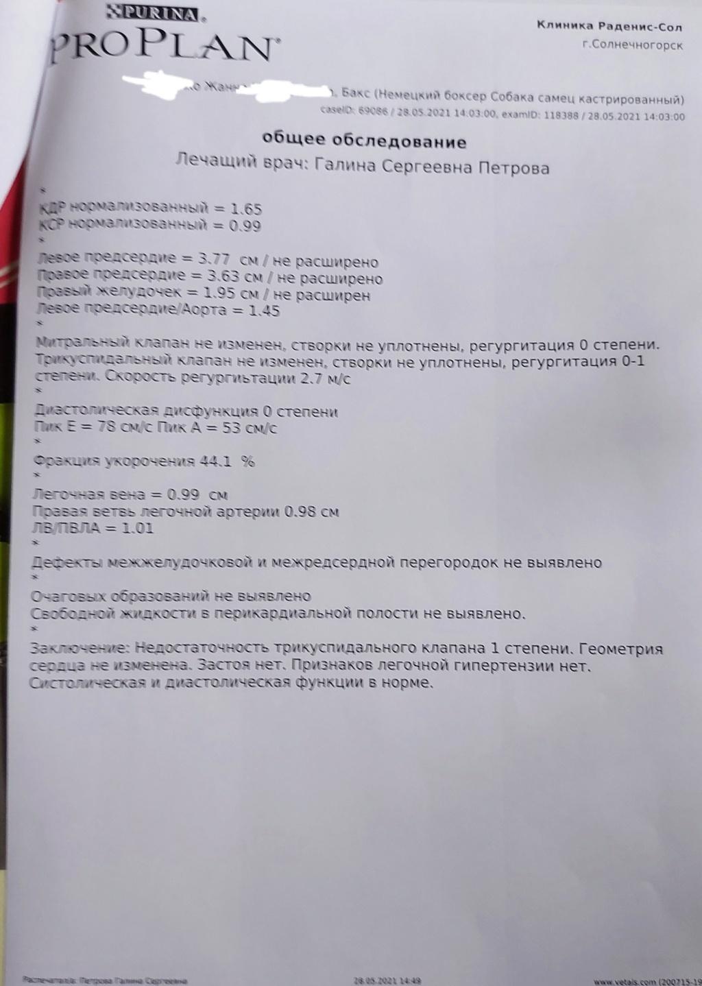 Москва, Бакс, кобель, 02.06.2010 - Страница 17 20210522
