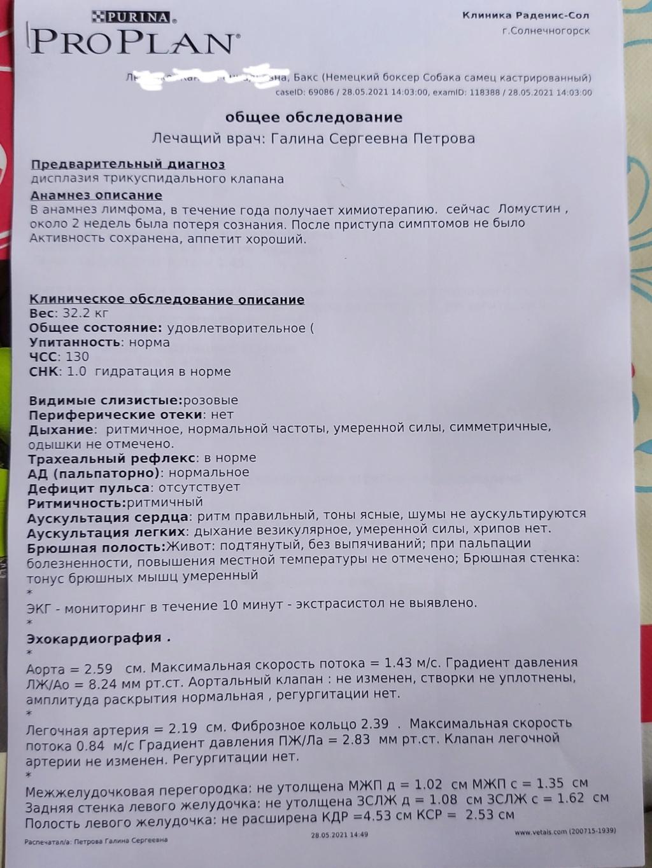 Москва, Бакс, кобель, 02.06.2010 - Страница 17 20210523