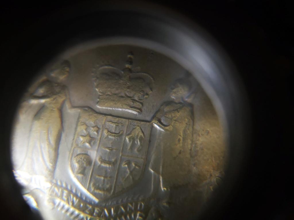 Dólar 1983 nueva zelanda Img_2030