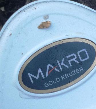 Makro Gold Kruzer - металдетектор за самородно злато 61Khz 211