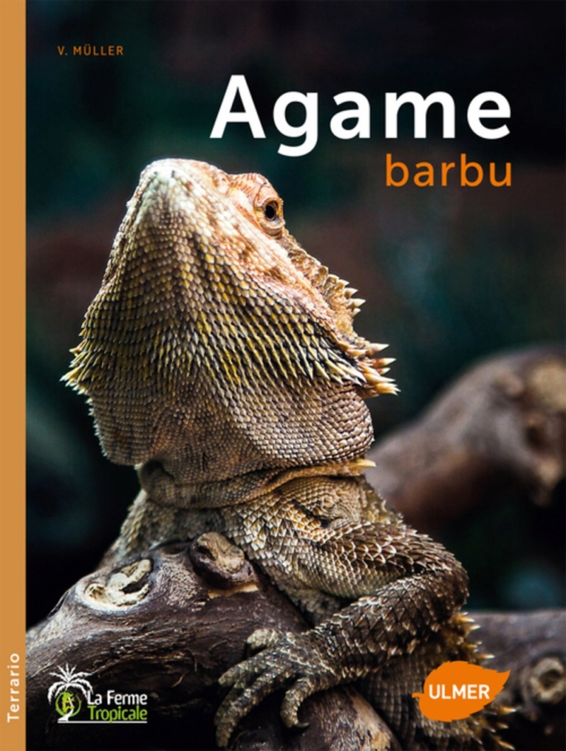 Livre sur le Pogona Vitticeps / l'Agame barbu 71e39r10