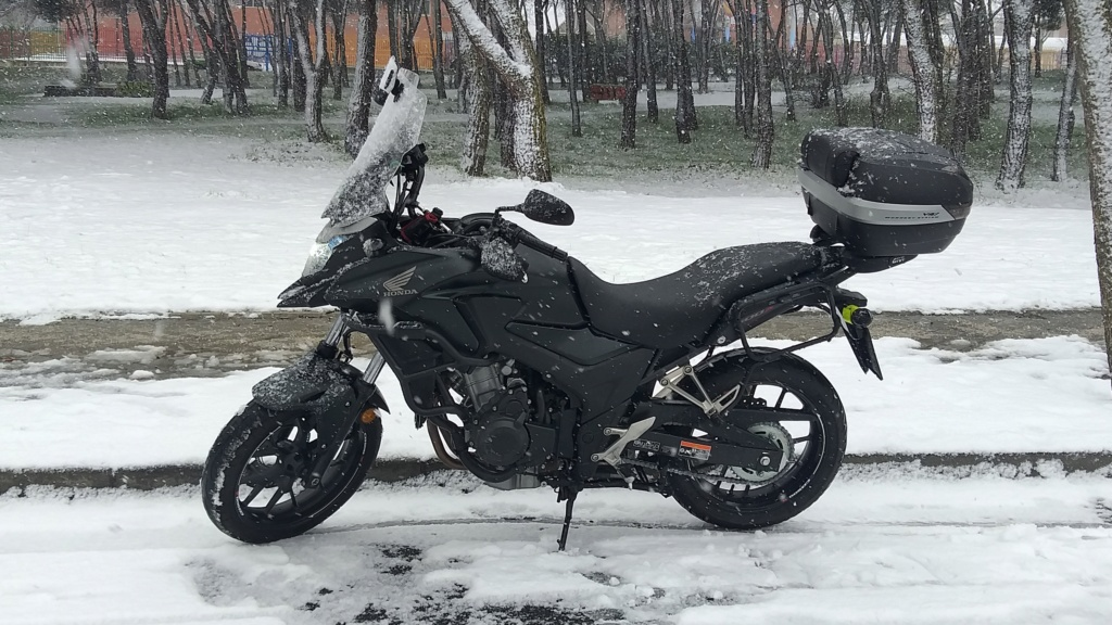 Año de nieves, año de bienes 20210111