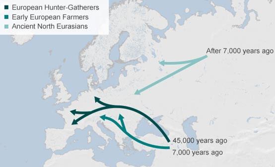 Pôvod Slovanov z pohľadu západných genetikov S110