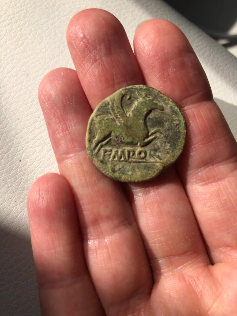 Identification d'une monnaie  15621410