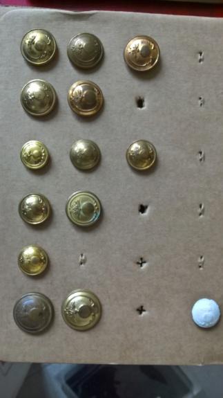 Ma collection de boutons belges Wp_20133