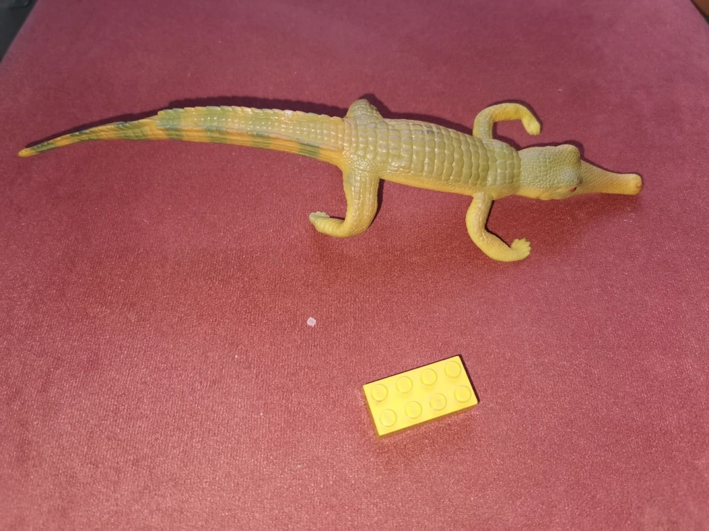 Pictures for Toy Animal Wiki - Page 14 18656410
