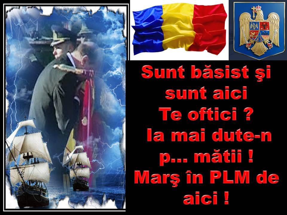 TROLI : COMEDY SCONCS STAR & COMEDY FROSA STAR PE BANCHIZĂ ŞI ÎN SCONCS TERITORY ( ADENDĂ ) Basist18