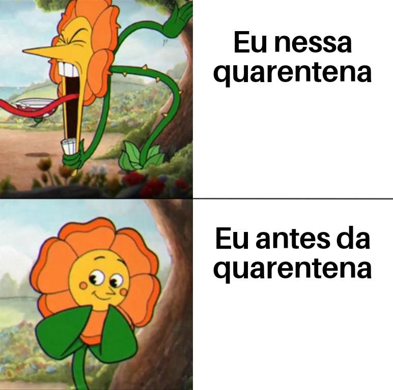 Diário do Paulista - Página 6 Cuphea10
