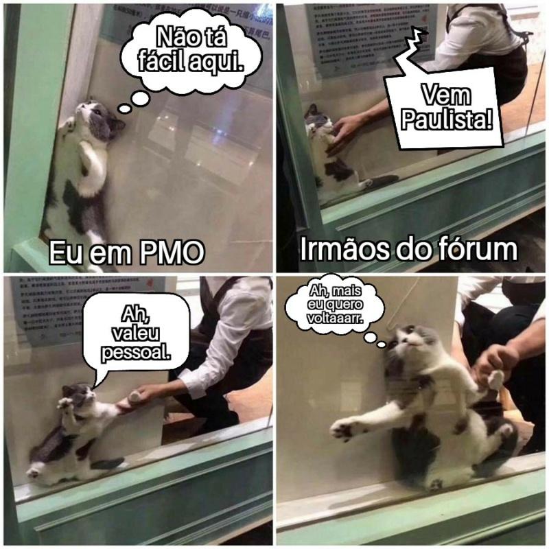 Diário do Paulista - Página 35 Helpin10