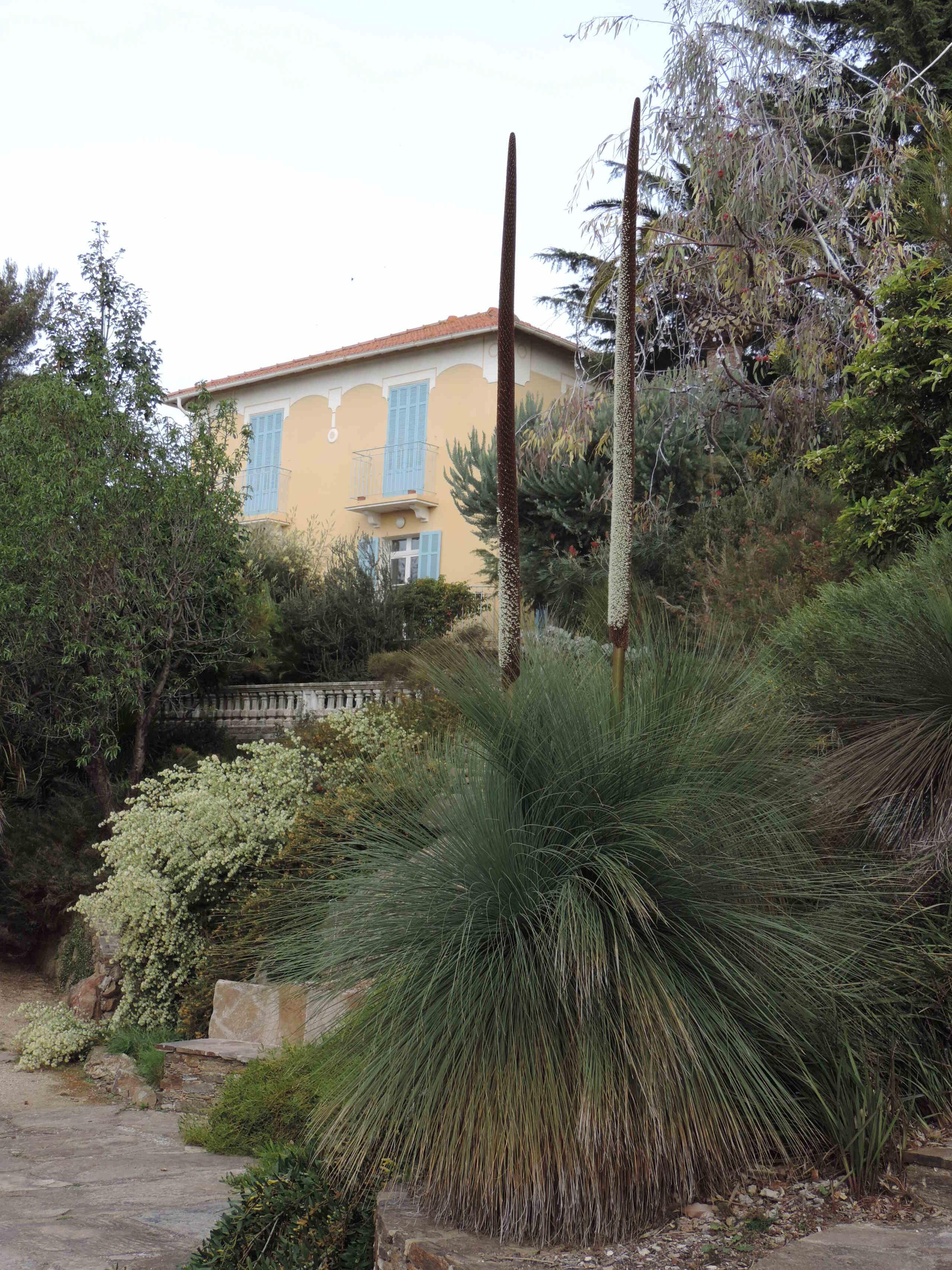 (83) Parc Gonzalez - Bormes-les-Mimosas  43010