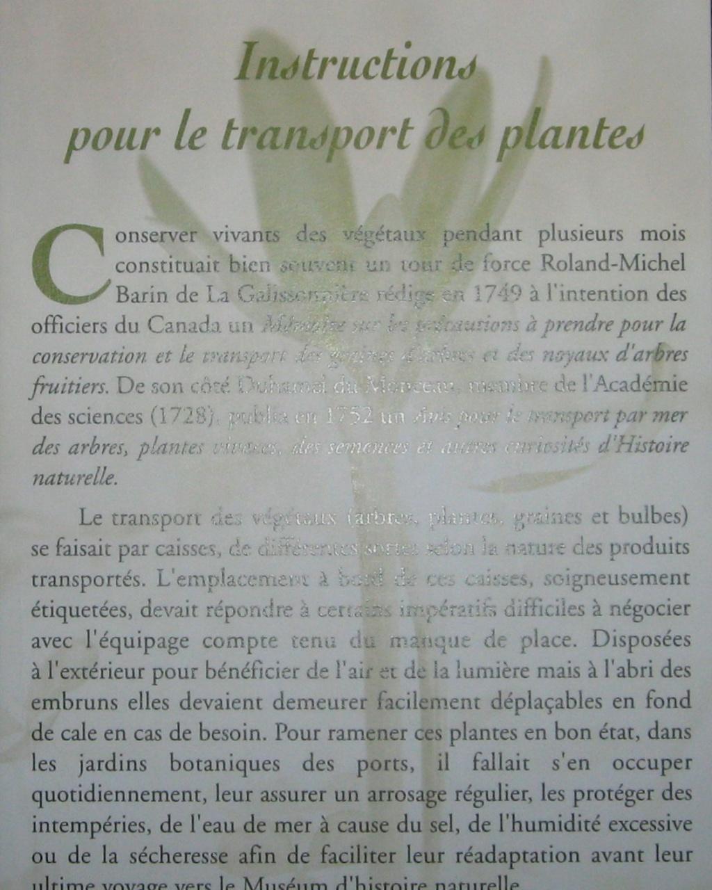 Les botanistes  - Page 3 Balagu20