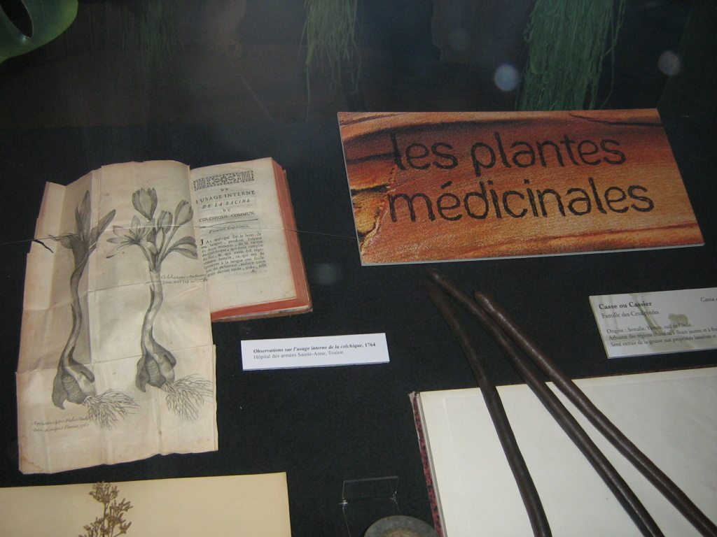Les botanistes  - Page 3 Balagu26