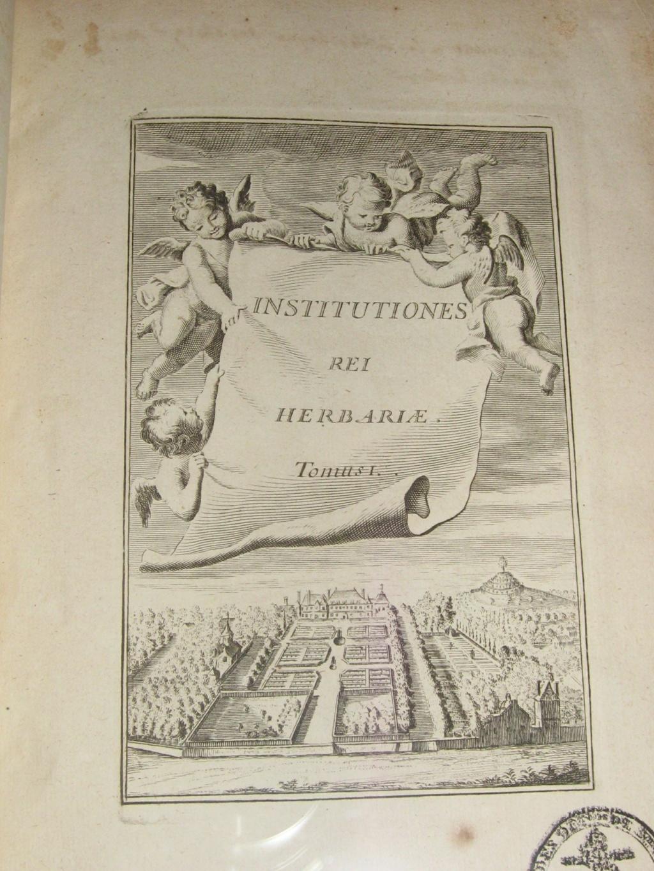 Les botanistes  - Page 4 Balagu48